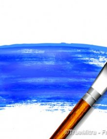 Paint & Brushes